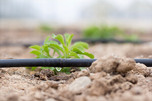 best drip irrigation system in india