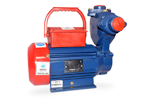DOMESTIC SELF PRIMING MONO BLOCK Electric Pumpset